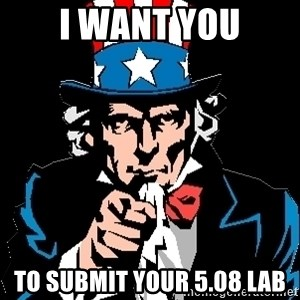 I Want You - i want you to submit your 5.08 lab