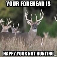 Deer Hunting Season - Your forehead is  Happy your not hunting