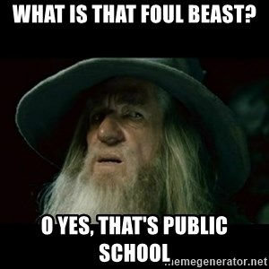 no memory gandalf - what is that foul beast? o yes, that's public school