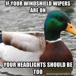 Actual Advice Mallard 1 - If your windshield wipers are on Your headlights should be too