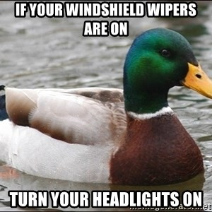 Actual Advice Mallard 1 - if your windshield wipers are on turn your headlights on