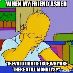 """Homer Facepalm - When my friend asked """"if evolution is true,why are there still monkeys?"""""""