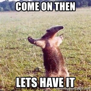 Anteater - COME ON THEN LETS HAVE IT