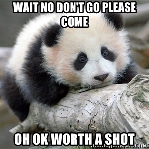 sad panda - wait no don't go please come oh ok worth a shot
