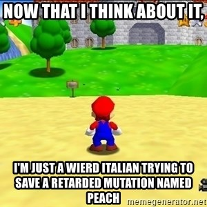 Mario looking at castle - Now that I think about it, I'm just a wierd Italian trying to save a retarded mutation named Peach