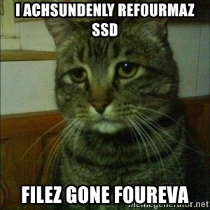 Depressed cat 2 - I achsundenly refourmaz ssd filez gone foureva