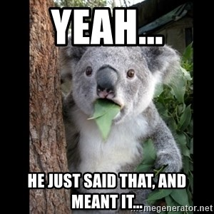 Koala can't believe it - Yeah... He just said that, and meant it...