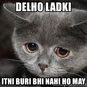 sad cat - Delho Ladki Itni Buri bhi Nahi ho may