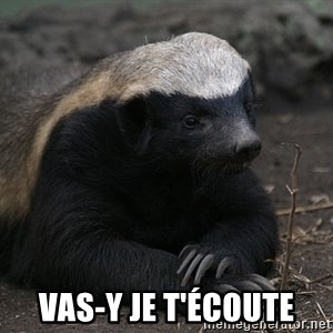 Honey Badger -  vas-y je t'écoute