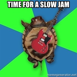 Aspiring Musician Turtle - time for a slow jam