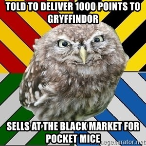 JEALOUS POTTEROMAN - Told to deliver 1000 points to Gryffindor Sells at the black market for pocket mice