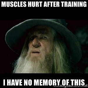 no memory gandalf - Muscles hurt after training I have no memory of this