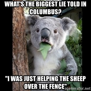 "Koala can't believe it - What's the biggest lie told in Columbus? ""I was just helping the sheep over the fence"""