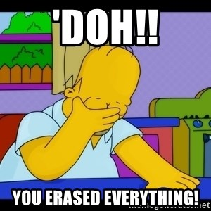 Homer Facepalm - 'Doh!! You erased everything!
