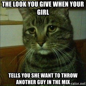 Depressed cat 2 - the look you give when your girl tells you she want to throw another guy in the mix
