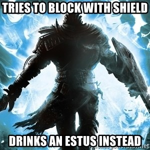 Dark Souls Dreamagus - tries to block with shield drinks an estus instead