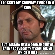 bill murray which is nice - I forgot my cakeday twice in a row but i already have a good amount of karma so i've got that goin' for me which is nice