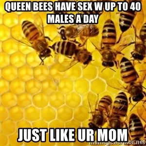 Honeybees - queen bees have sex w up to 40 males a day just like ur mom