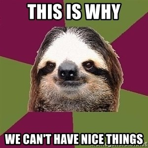 Just-Lazy-Sloth - This Is Why We Can't Have Nice Things
