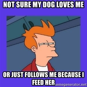 not sure fry - Not sure my dog loves me or just follows me because I feed her
