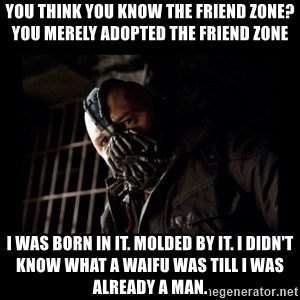 Bane Meme - You Think You Know The Friend Zone? You merely adopted the friend zone I was born in it. molded by it. I didn't know what a waifu was till I was already a man.