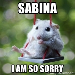 Sorry I'm not Sorry - sabina I am so sorry