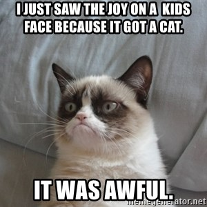 Grumpy cat 5 - i just saw the joy on a  kids face because it got a cat. it was awful.