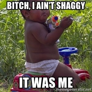 Swagger Baby - Bitch, I ain't Shaggy It was me