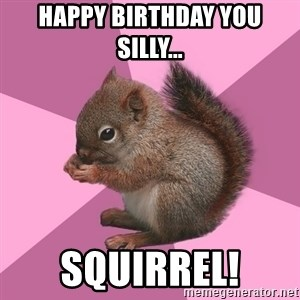 Shipper Squirrel - Happy Birthday you Silly... SQUIRREL!