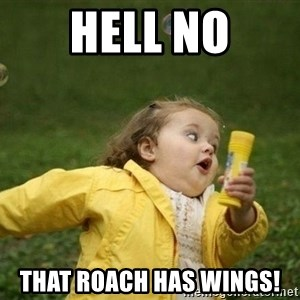 Little girl running away - Hell no That roach has wings!