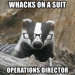 Nerdy Badger - Whacks on a suit  Operations Director