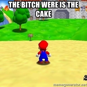 Mario looking at castle - The bitch were is the cake