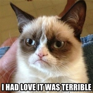 not funny cat -  i had love it was terrible