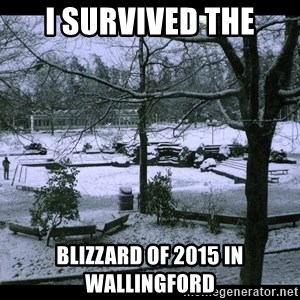 UVIC SNOWDAY - I survived the Blizzard of 2015 in Wallingford