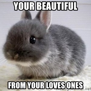 ADHD Bunny - Your Beautiful From your loves ones