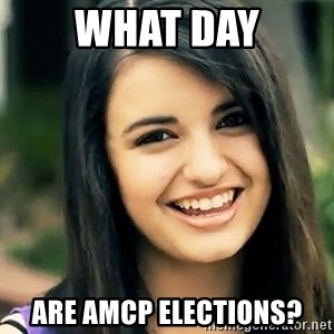 Rebecca Black Fried Egg - What day are AMCP elections?