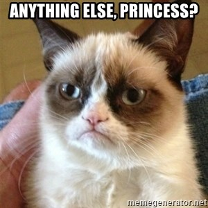 Grumpy Cat  - Anything else, Princess?