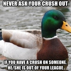Actual Advice Mallard 1 - never ask your crush out if you have a crush on someone, he/she is out of your league