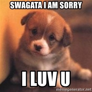 cute puppy - Swagata I am sorry I luv u