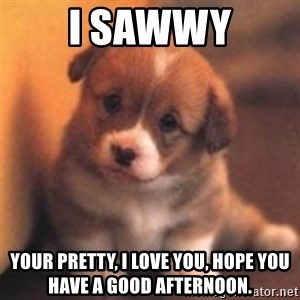 cute puppy - i sawwy your pretty, i love you, hope you have a good afternoon.