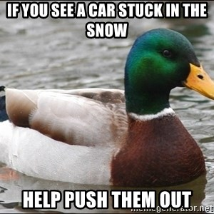 Actual Advice Mallard 1 - If you see a car stuck in the snow help push them out