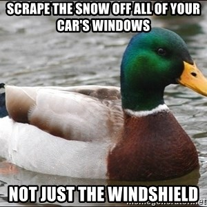 Actual Advice Mallard 1 - scrape the snow off all of your car's windows not just the windshield