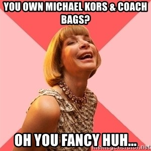 Amused Anna Wintour - YOU OWN MICHAEL KORS & COACH BAGS? OH YOU FANCY HUH...
