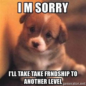 cute puppy - i m sorry i'll take take frndship to another level
