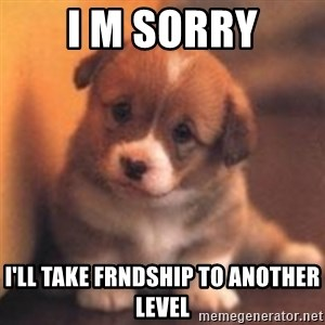 cute puppy - i m sorry i'll take frndship to another level