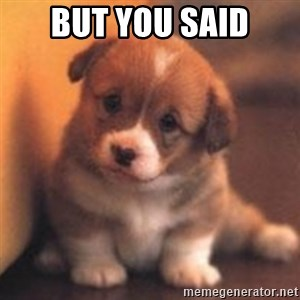 cute puppy - But you said