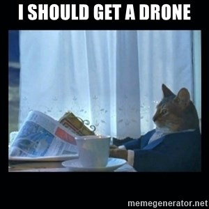 1% cat - I should get a drone