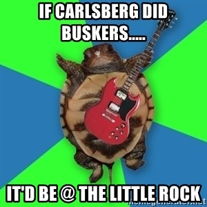 Aspiring Musician Turtle - if carlsberg did buskers..... it'd be @ the little rock
