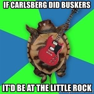 Aspiring Musician Turtle - if carlsberg did buskers it'd be at the little rock