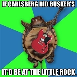 Aspiring Musician Turtle - if Carlsberg did busker's it'd be at the little rock